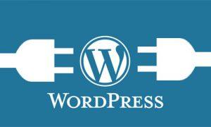 wordpress自定义上传文件类型的方法-一对一资讯网